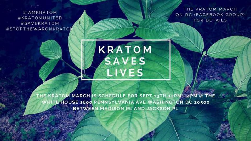 Plans Of Online Kratom Purchase Domination