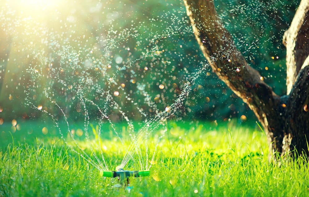 Yard Sprinkler Systems Reasons Now Is The Time To Cease