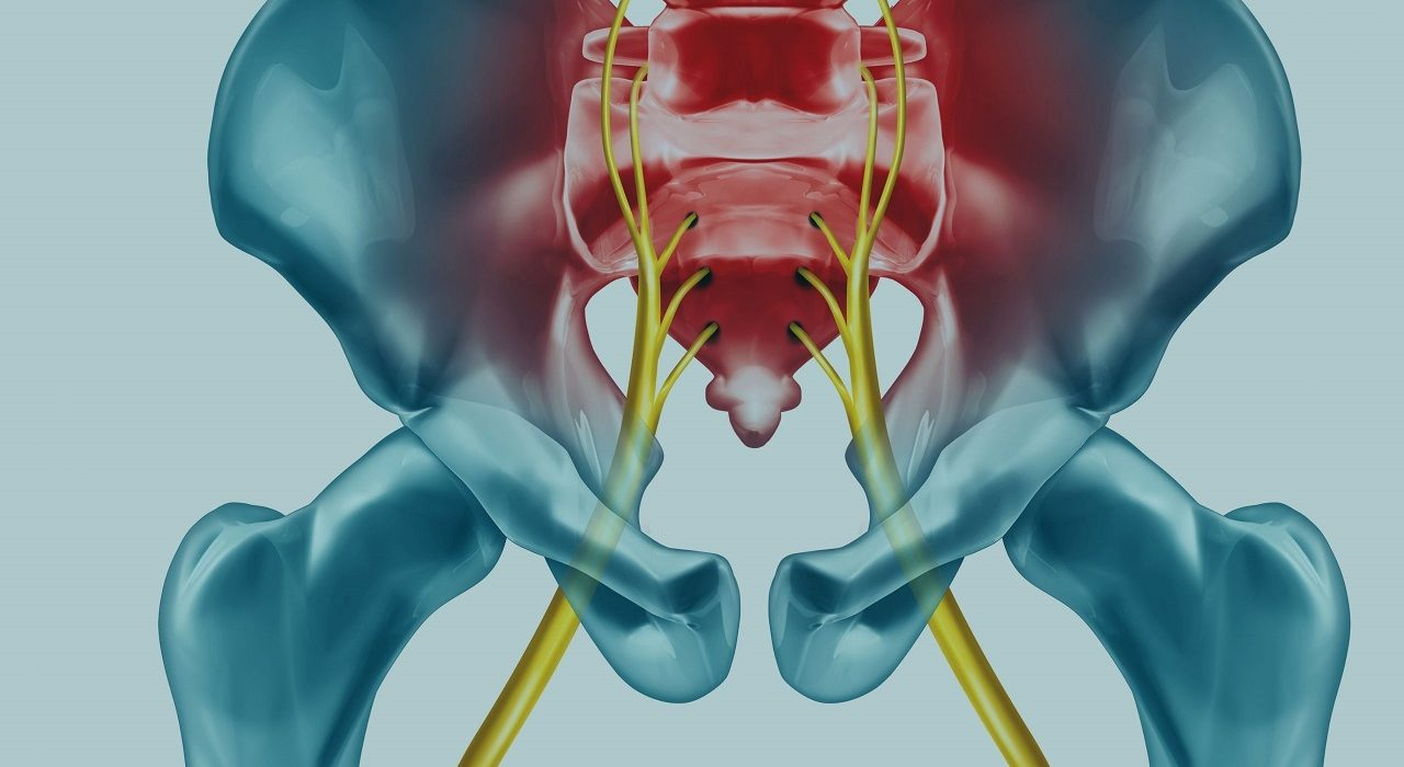 Triple Your Outcomes At The Sciatic Nerve In Half The Time